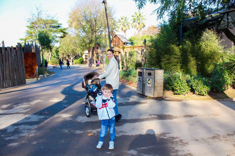 zoo barcelona (8)
