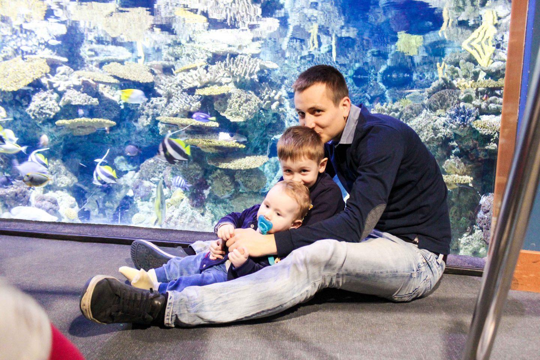aquarium barcelona (30)