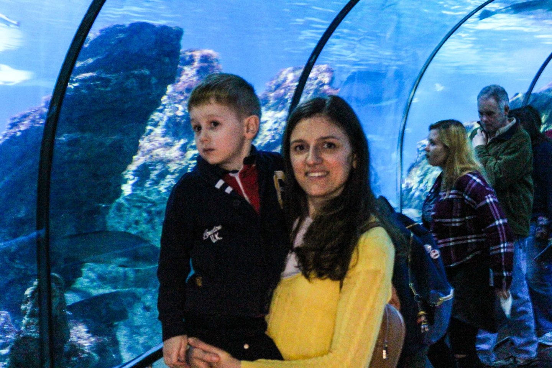 aquarium barcelona (38)