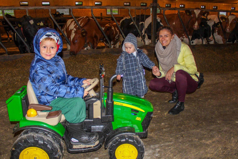farm norway (2)