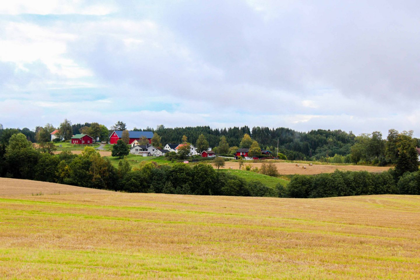 farm norway (21)