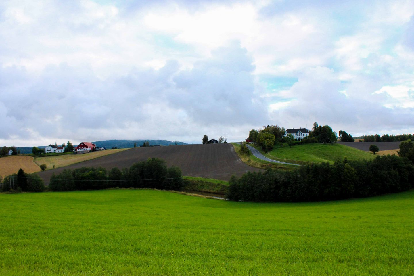farm norway (22)