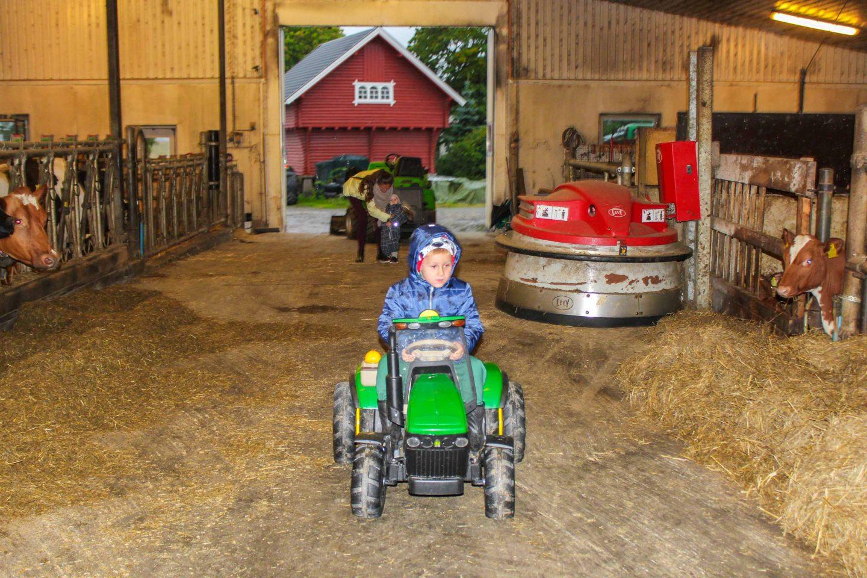 farm norway (33)