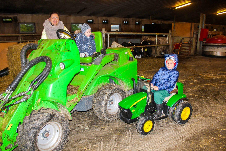 farm norway (4)