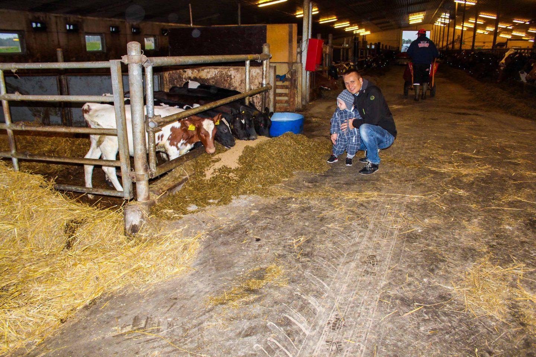 farm norway (6)