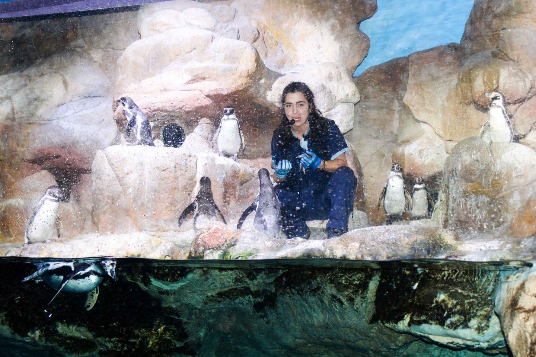 aquarium barcelona (48)