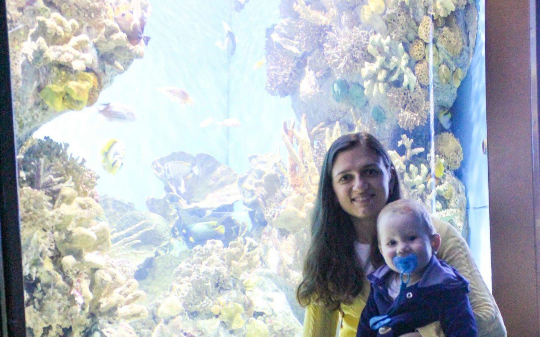 aquarium barcelona (69)