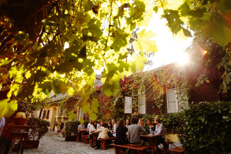 (c) WienTourismus Peter Rigaud_Wine Tavern Schübel-Auer