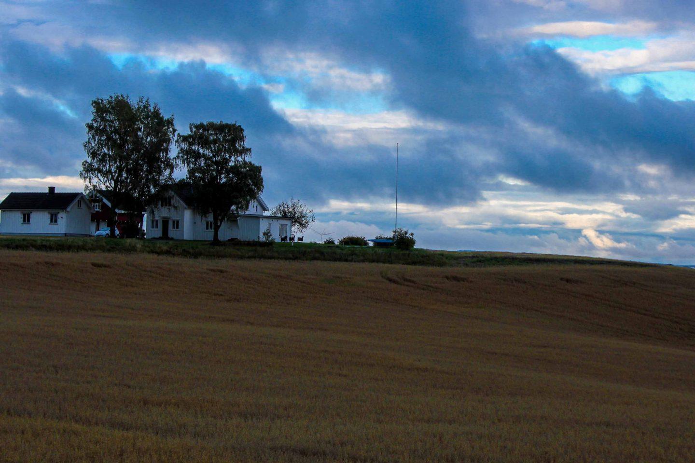 farm norway (17)