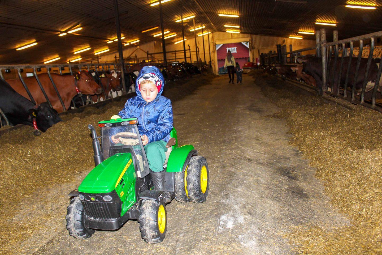 farm norway (23)
