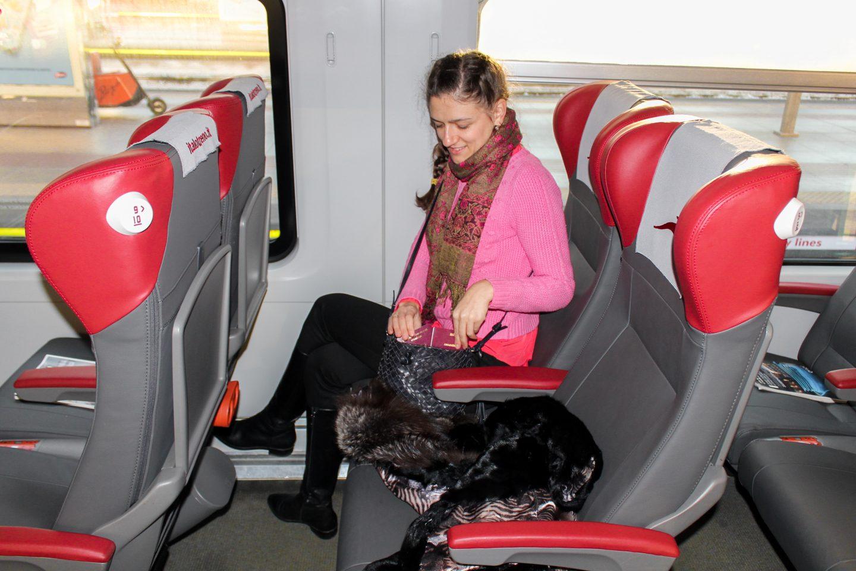 Milan, 1 day trip (3)